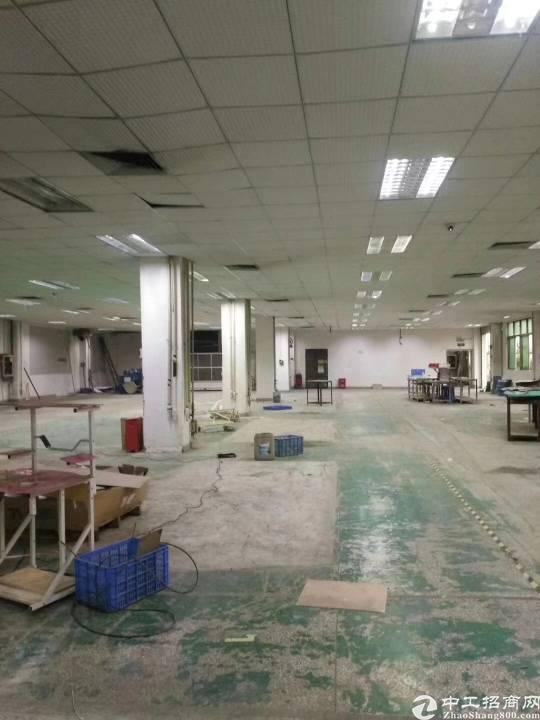 沙井新桥芙蓉工业区二楼正常1500平米长方招租