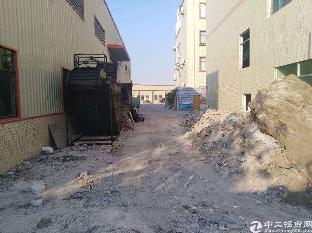 茶山镇独门独院原房东的厂房招租