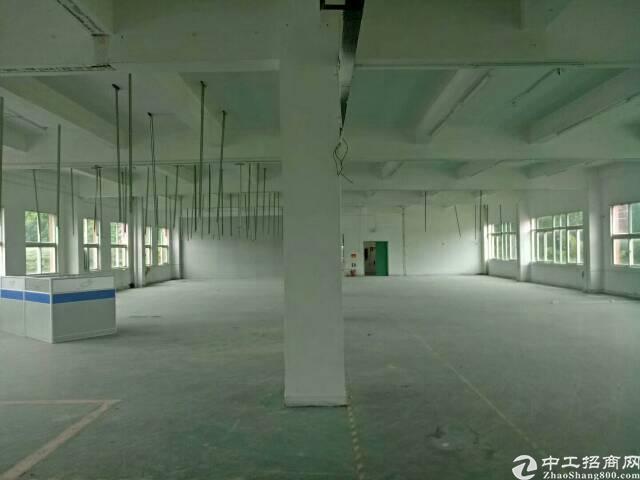 凤岗新出独院厂房6000平招租