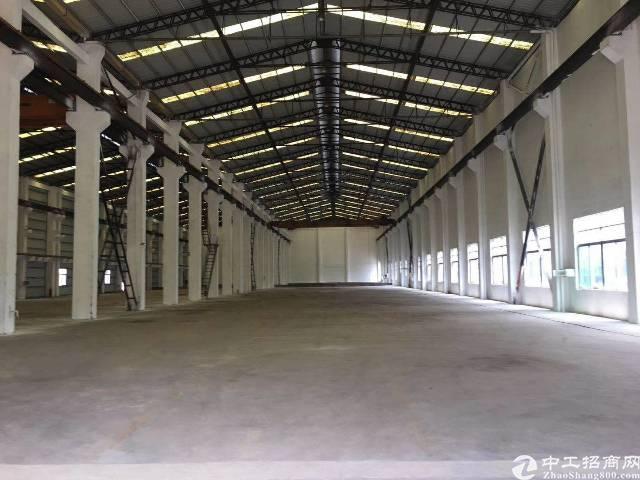 新塘民营工业区新出滴水10米单一层钢构独院厂房-图2
