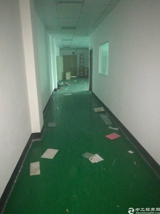深圳宝安福永龙王庙,新出楼上800平米,带装修