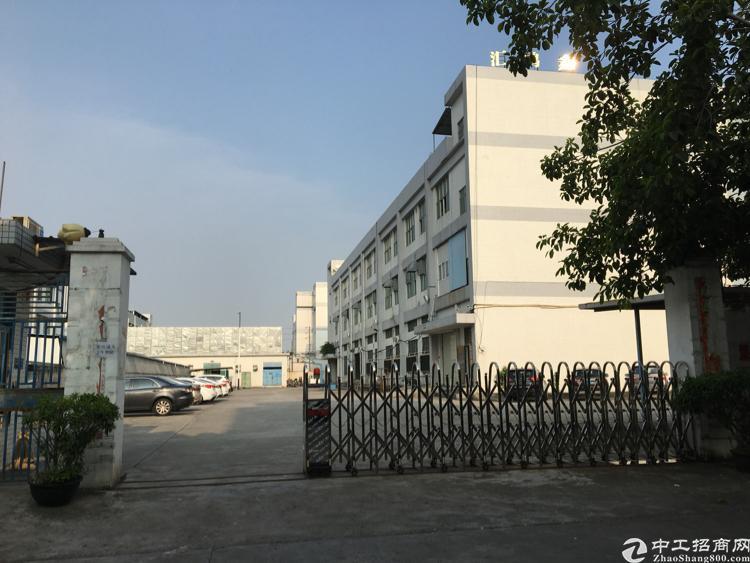 松岗靠沙井后亭原房东独门独院1-3层6458平米实际面积出租