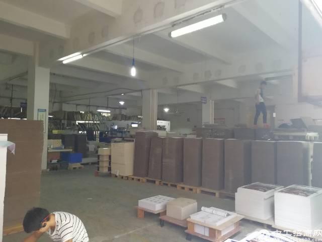 观澜松元新村工业园新出一楼310平方低价招租-图4