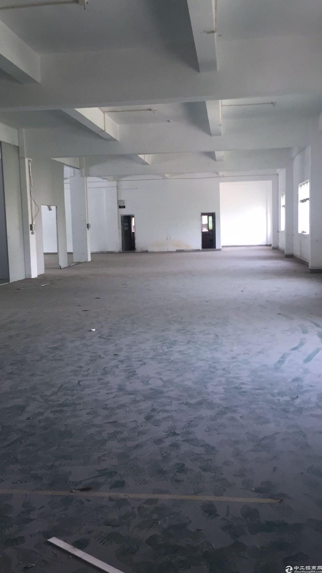 大朗原房东厂房