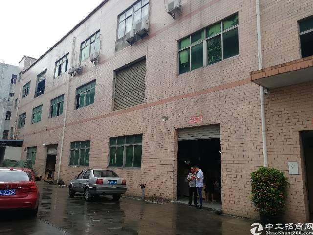 观澜福民人民路附近新出一楼280平方带装修