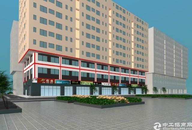 茶山产业园全新50年红本标准厂房1500平方米出售