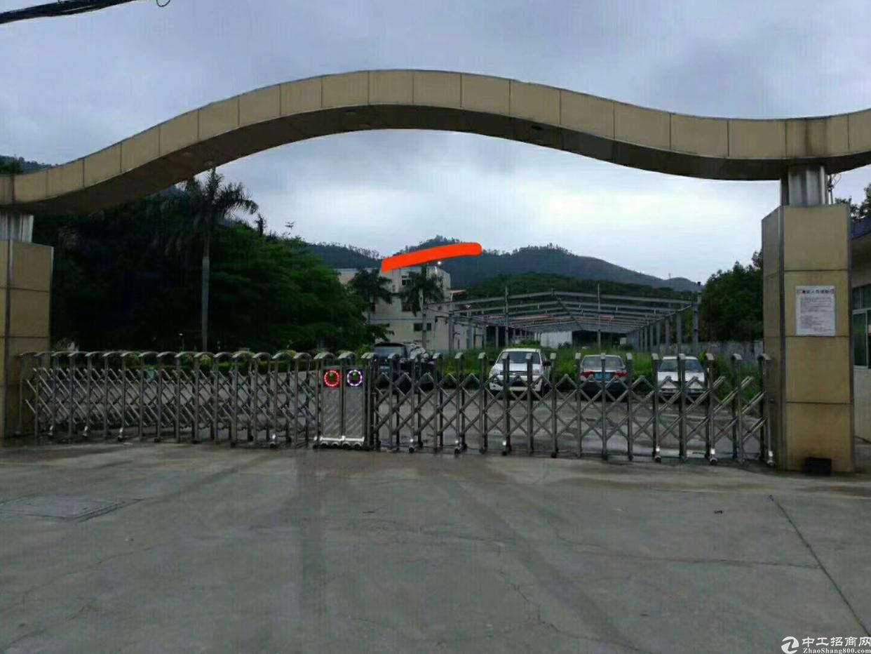 惠阳大亚湾占地20000m²建筑面积13000m平方出售
