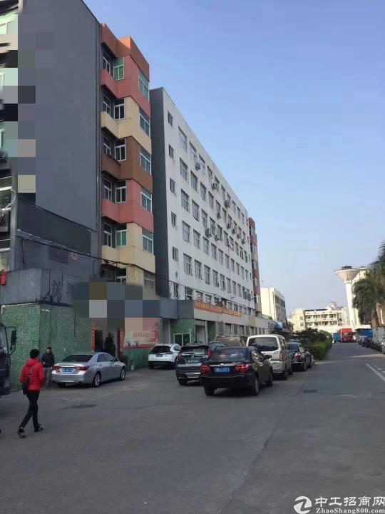 龙华民治工业路上60平标准仓库出租