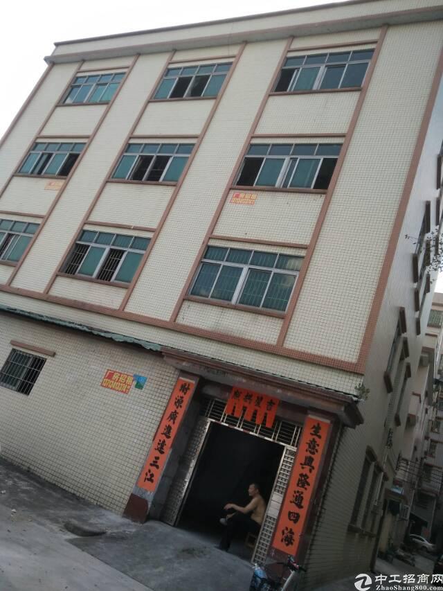 寮步镇独栋厂房
