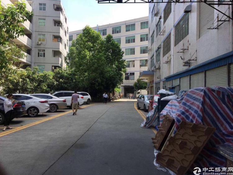 观澜桂花品顺路原房东1-3层3360平出租!