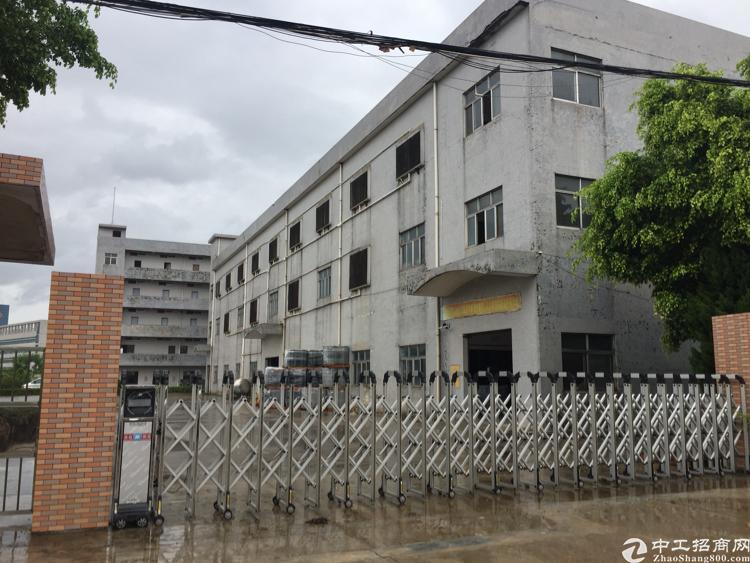 茶山镇6000平方独院厂房出售