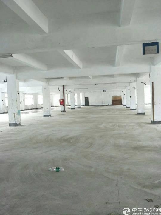 横岗六约新出楼上1000平米厂房出租
