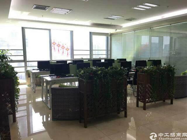 深圳机场中城产业创新园随时都能看到飞机起飞视野超好图片3