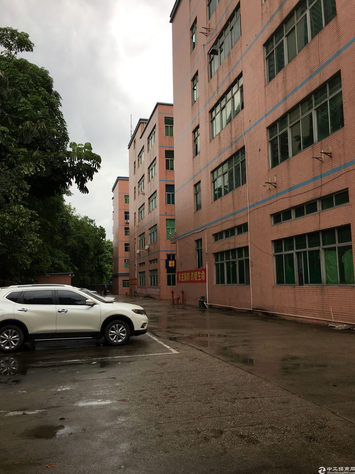 坂田天安云谷附近带装修2-3-4楼上5500平方大小可以分租