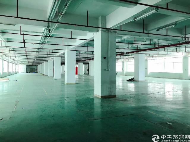 光明新区新出楼上整层3000平米精装修不要转让费