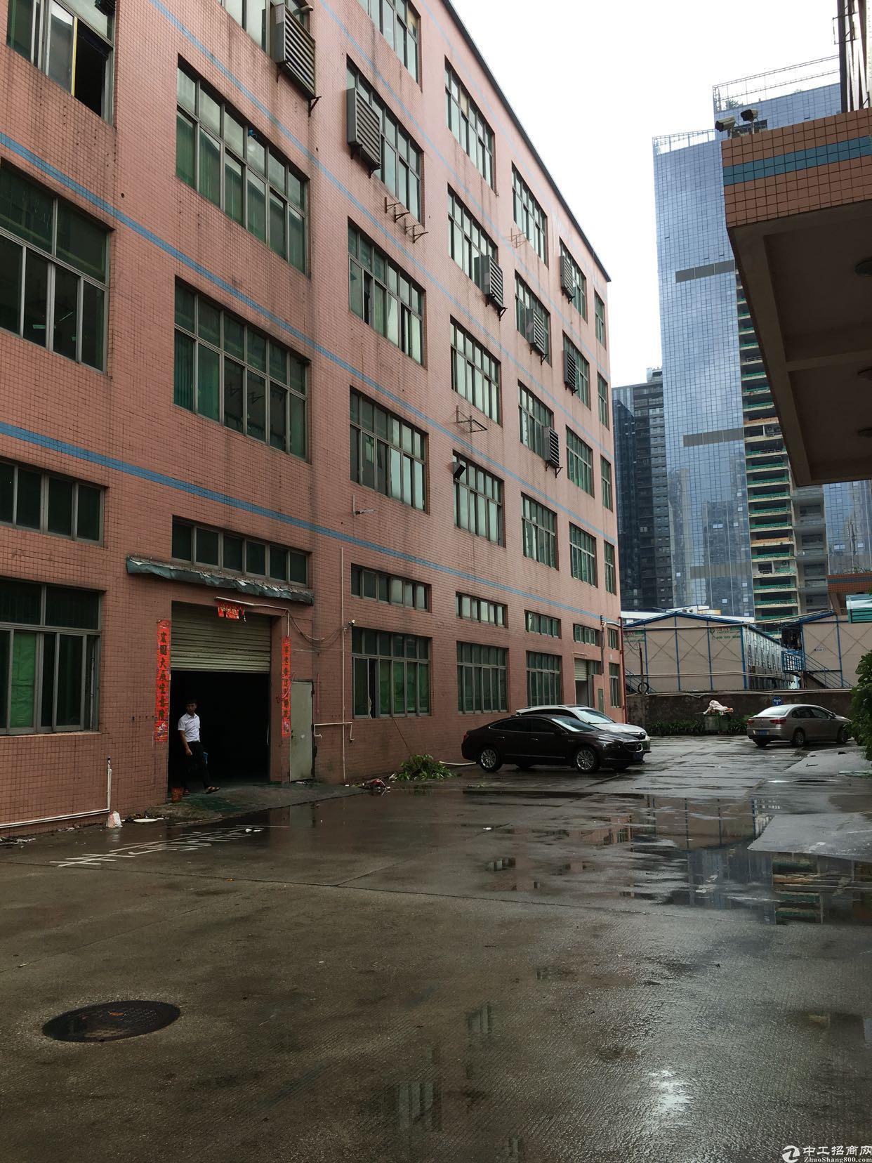 坂田雪象医院附近新出一楼1200平方二楼1400平方可分租
