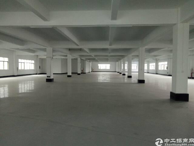 陈江新出3000平零公摊原房东厂房-图2