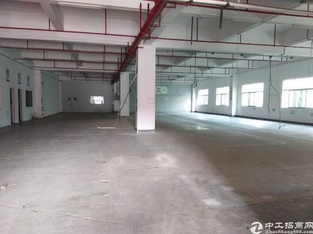 惠阳大亚湾新出一楼标准厂房2900平米原房东厂房出租形象好