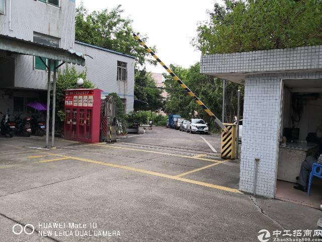 南山西丽松白路边经典独院厂房10680平共6层可整租分层租