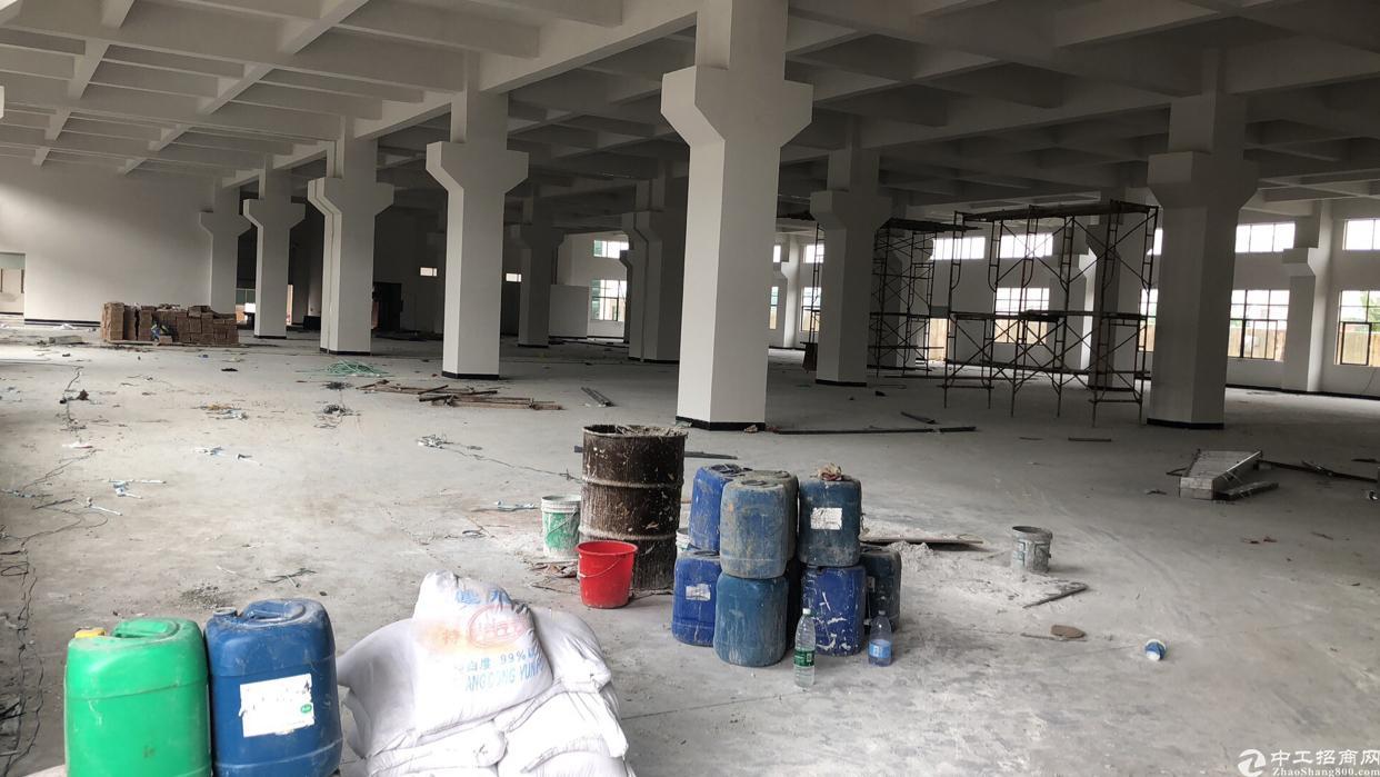 东莞市全新标准厂房一楼出租