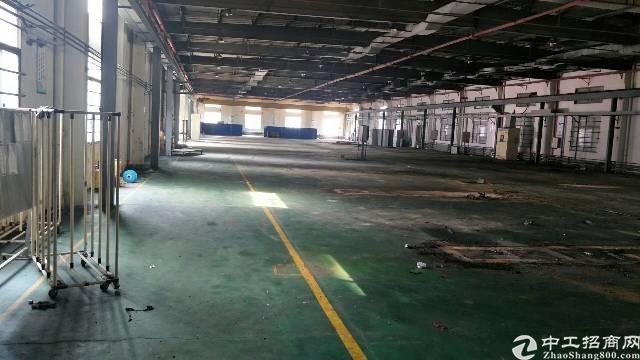 三栋数码园钢构厂房仓库出租-图3