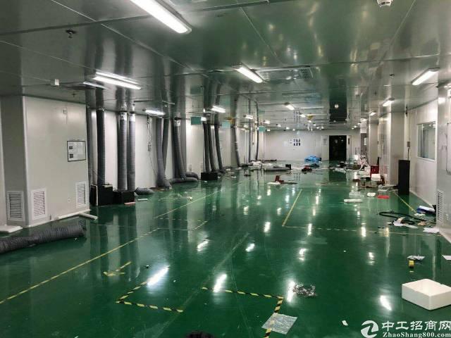 福永新和10000平方独栋厂房可分租-图2