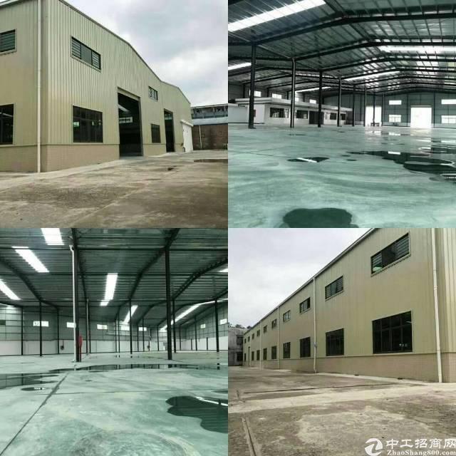石排全新单一层厂房出租,面积5500方,滴水8.5米
