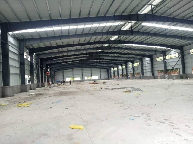 高埗单一层钢构厂房5600平