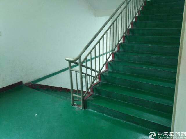 福永怀德新出独门独院三层3900平方标准工业厂房-图7