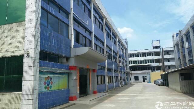 横沥镇裕宁工业区新出厂房火爆出租面积1060平方