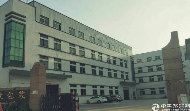 省道边上9成新独院标准厂房带现成装修低价出租