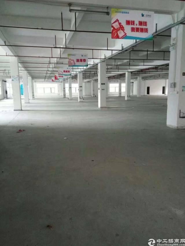 望牛墩带红本厂房20000平米空地大独立办公楼形象好