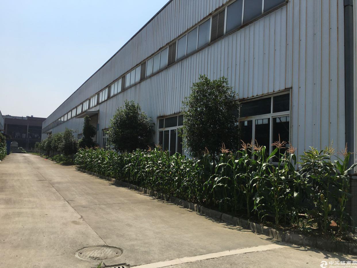 天府新区彭山青龙工业园30亩出售-图8