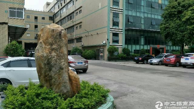东莞万江新出厂房出租楼房15000平方,只需13元