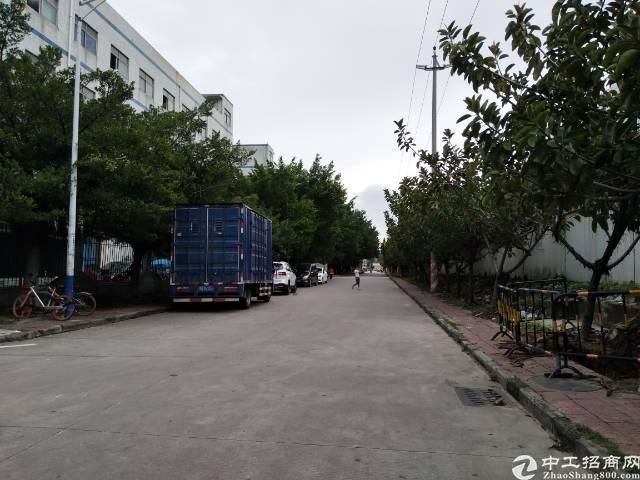 福永1500平厂房招租