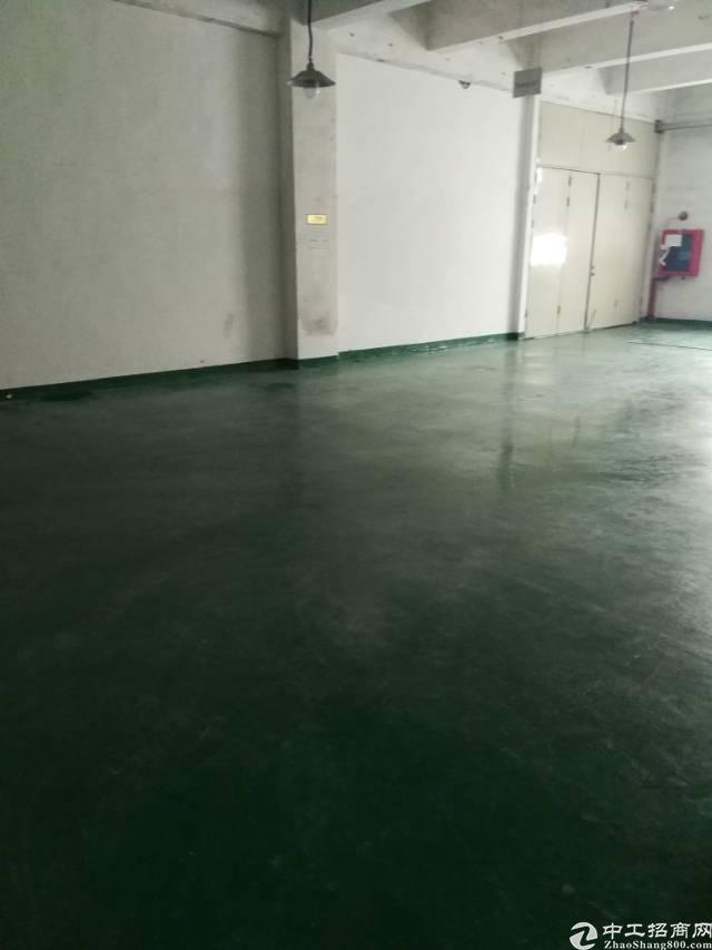 福永107国道边新出楼上带装修厂房390平出租-图2