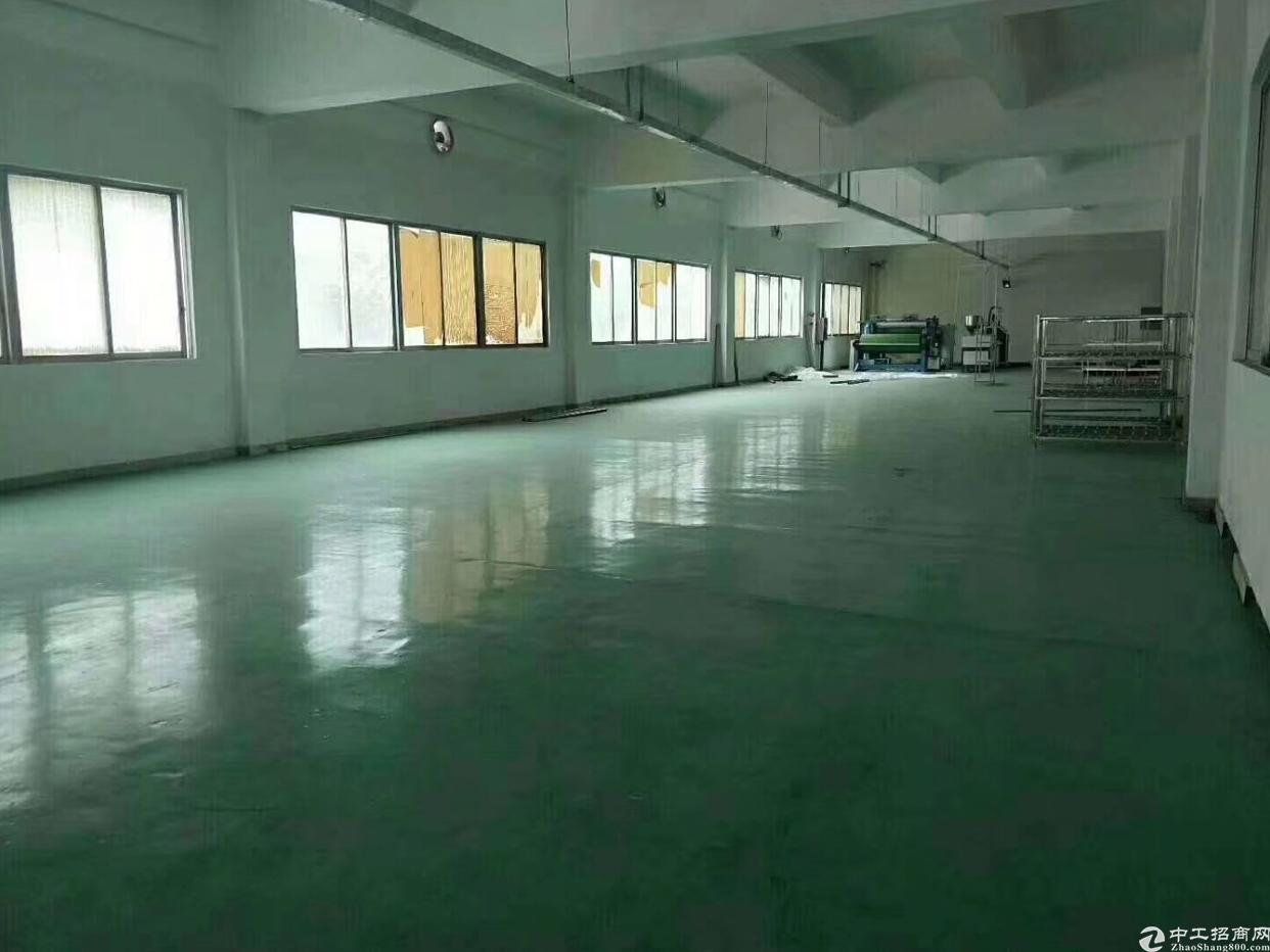 全新厂房分租,500平方楼上带电梯县城办公室装修