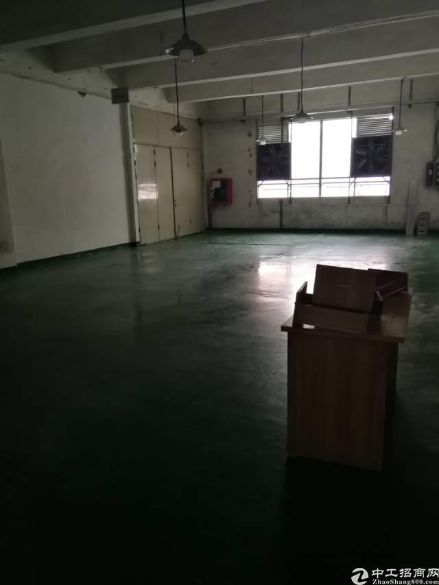 福永107国道边新出楼上带装修厂房390平出租-图5