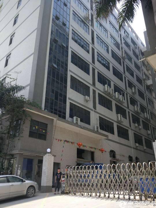 沙井共和楼上整层1900平米厂房招租