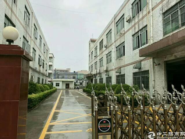 福永怀德新出独门独院三层3900平方标准工业厂房-图3