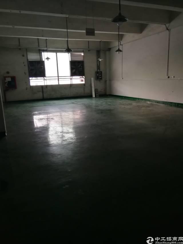 福永107国道边新出楼上带装修厂房390平出租