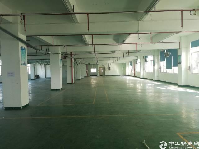 惠州惠城区仲恺大道新出独院厂房11000平