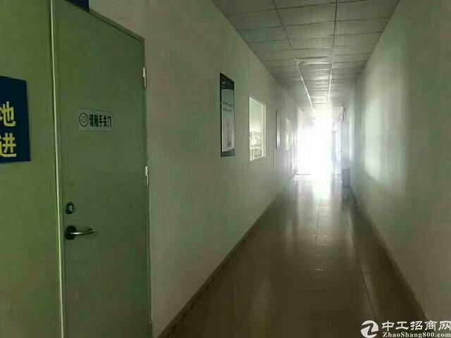 福永2500平方厂房带装修