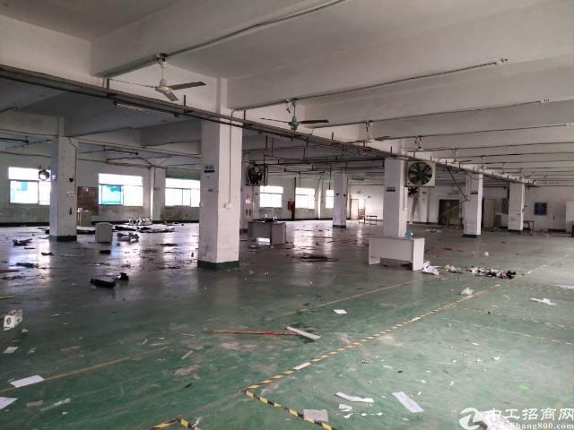福永1500平厂房招租-图5