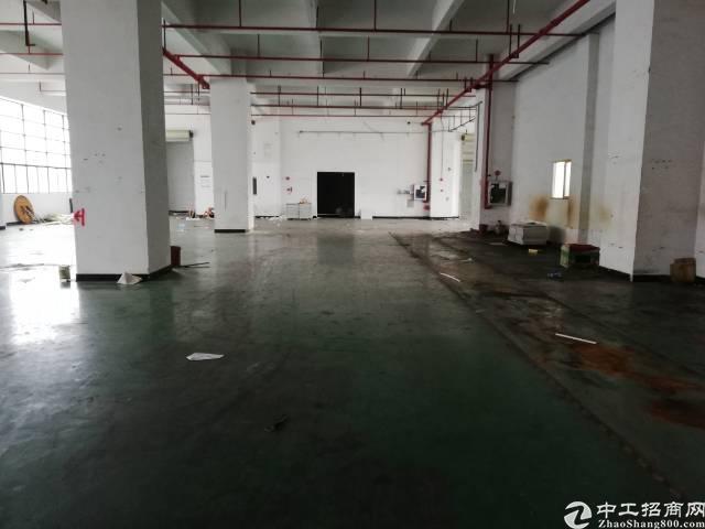 公明新出一楼2500平米厂房