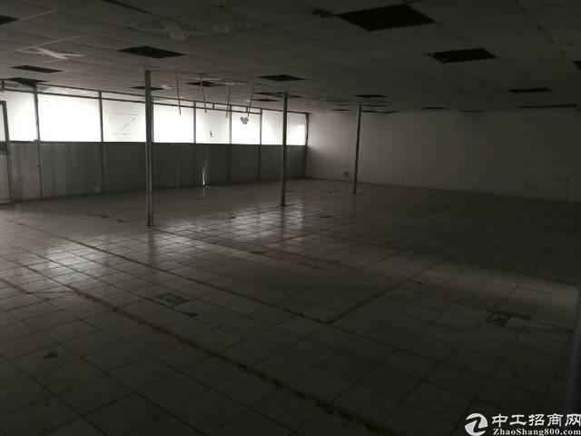 沙井镇新桥高速出口楼上15元厂房出租