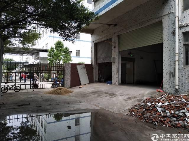 福永1500平厂房招租-图4