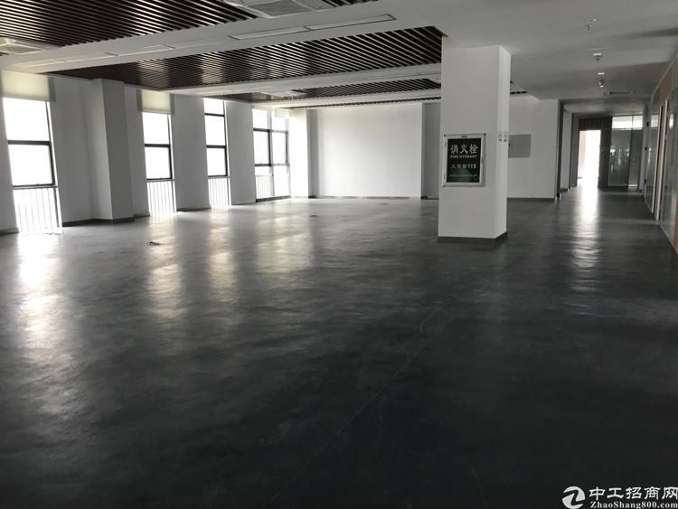 坪山楼上500平米精装修厂房出租 无公摊-图3
