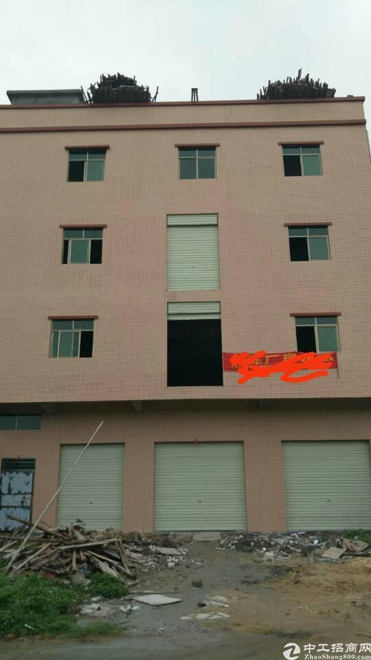 横沥镇月塘新空  标准厂房1300平方十宿舍