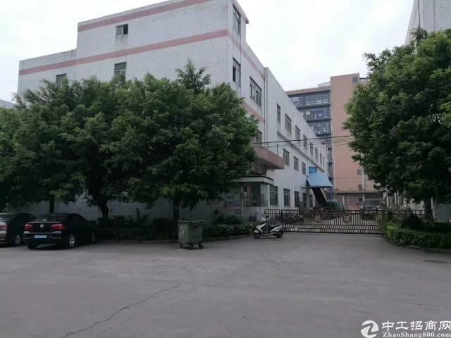 寮步镇华南工业城分租一楼1200平方出租